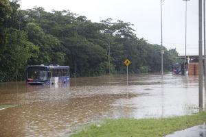 SP: Guarulhos sofre com alagamentos e linhas de ônibus da EMTU são suspensas
