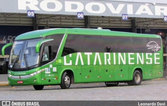 SC: Prefeitura de Balneário Camboriú quer vistoriar todos os ônibus por equipe de saúde