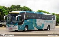 Bahia: Governador Rui Costa libera o transporte intermunicipal em cidades sem casos de coronavírus