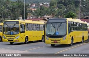 SC: Joinville retoma a operação de ônibus na próxima segunda-feira 8 de junho