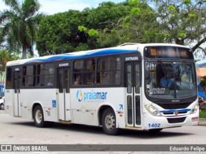Caraguatatuba: Exército Brasileiro realiza higienização em pontos de ônibus