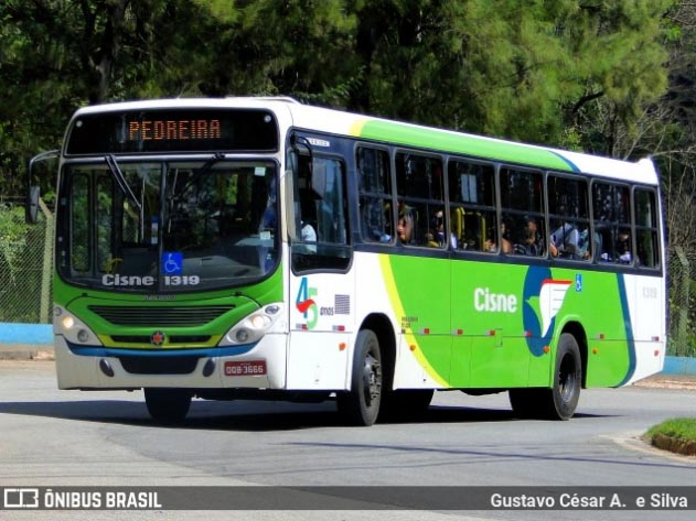 MG: Vereadores de Itabira aprovam lei que permite o transporte de animais em ônibus