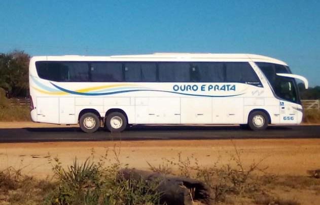 RS: Ônibus intermunicipais farão o transporte de testes de Covid-19, afirma governo do estado