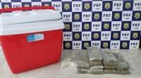 Vídeo: PRF da Bahia encontra entorpecentes escondida em caixa térmica na BR-116