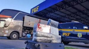 Vídeo: Agentes da PRF da Bahia apreende 27 Kg de skunk durante abordagem a ônibus da Catedral Turismo na BR-116