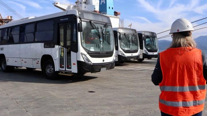 PR: Ônibus são embarcados em operação inédita no Porto de Paranaguá