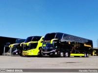 Vídeo: Grupo Itapemirim disponibiliza nova identidade visual em ônibus DD