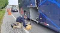 Vídeo: PRF apreende entorpecentes em três ônibus na Régis Bittencourt