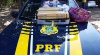 Vídeo: PRF apreende entorpecente em ônibus na BR-343 avaliada em R$ 30 mil no Piauí