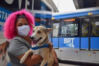 Rio: Terminal Paulo da Portela recebe o ônibus Castramóvel