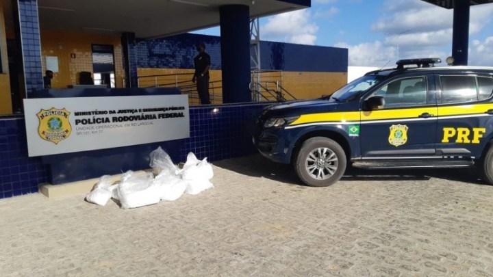 Vídeo: PRF prende passageiro de ônibus com 115kg de entorpecentes na BR 101