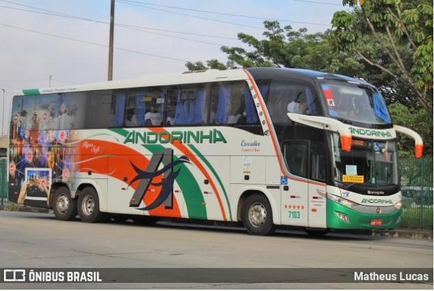 MS: PRF Intercepta seis ônibus da Andorinha  transportando bolivianos na BR-262