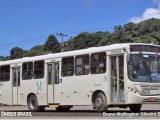 PR: Motorista reage a assalto de ônibus e atira em marginal em Almirante Tamandaré
