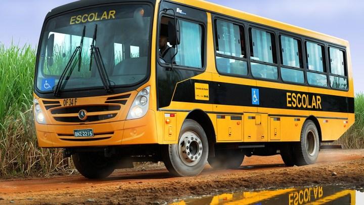 MS: Ministério Público denuncia emissão de laudos falsos para o tráfego de veículos de transporte escolar