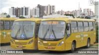 PR: Rodoviários de Ponta Grossa realizam paralisação nesta segunda-feira