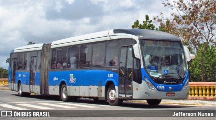 Grande Recife: TRT determina circulação de pelo menos 50% da frota de ônibus