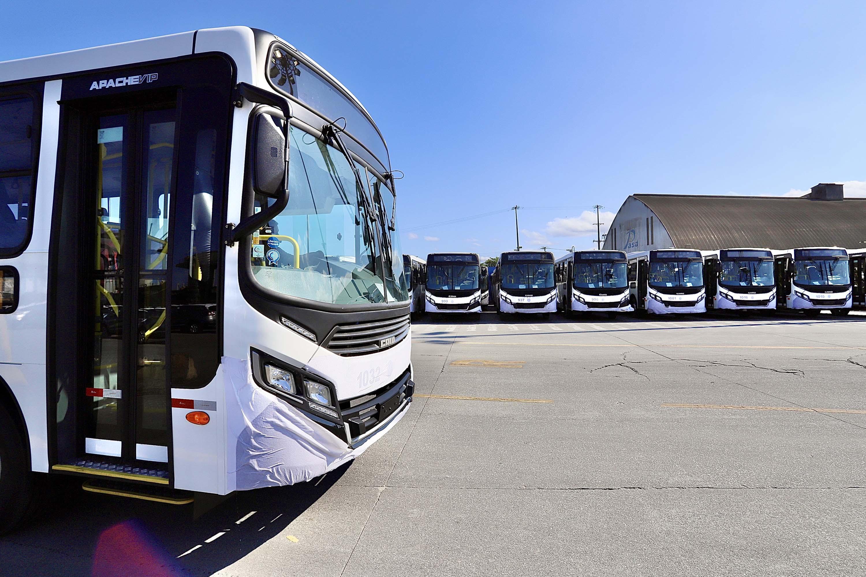 PR: Porto de Paranaguá embarca mais 157 ônibus e bate novo recorde