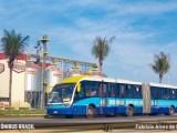 Grande Goiânia aumenta a frota de ônibus para a 2ª etapa de provas do Enem 2020 neste domingo