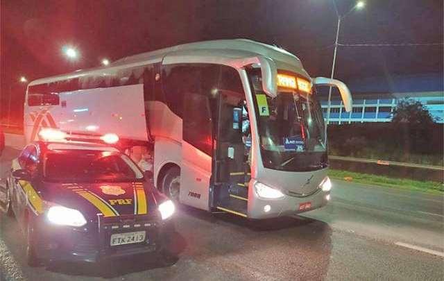 PRF flagra 900 animais silvestres sendo transportados em um ônibus na BR-381, em Atibaia