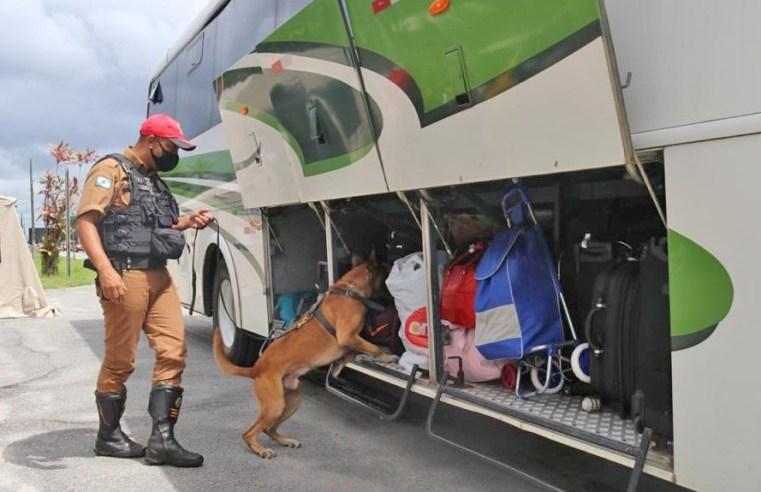 PR: Operação Verão apreende entorpecentes durante fiscalização no Litoral