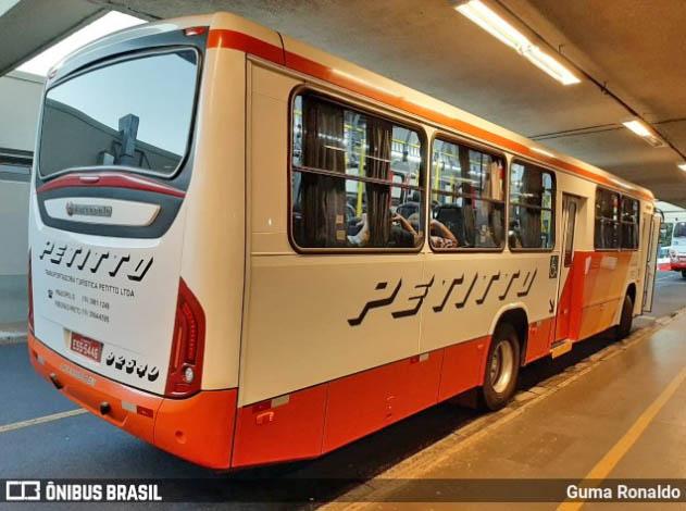 SP: Justiça determina que Artesp fiscalize a circulação de ônibus lotados em linhas intermunicipais na região de Ribeirão Preto