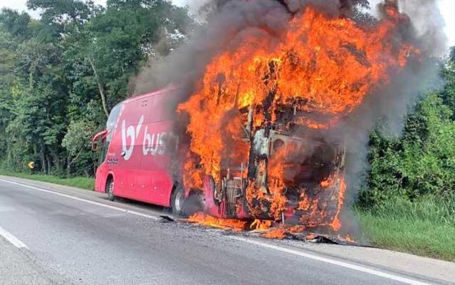 Vídeo: Ônibus pega fogo na Fernão Dias em Mairiporã nesta manhã desta sexta-feira