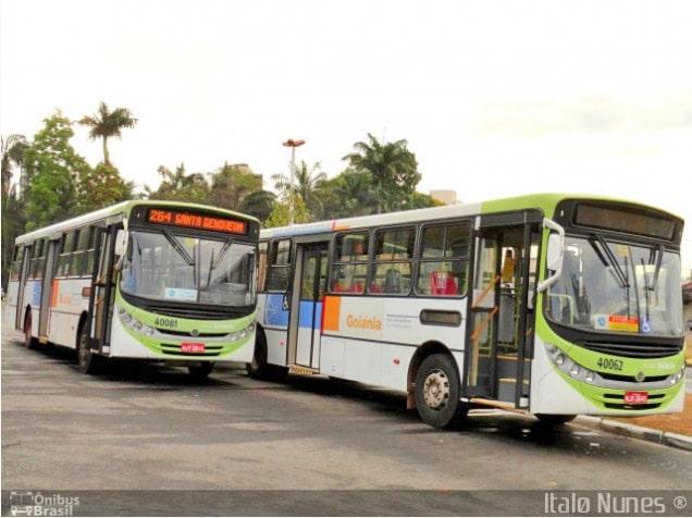 GO: Cootego terá que indenizar passageira de ônibus em R$ 30 mil, vítima de acidente