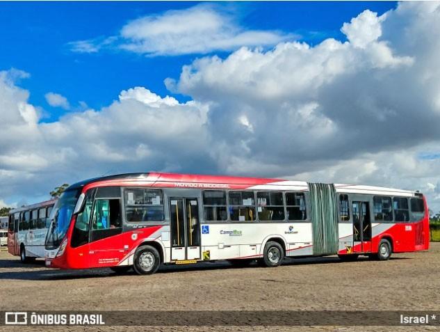 SP: Campinas contrata auditoria e anuncia nova licitação em linhas de ônibus