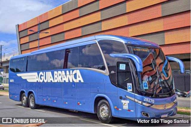 Aguia Branca Viagens vende passagens de ônibus e avião assim como reserva de hotel e pacotes turísticos - revistadoonibus