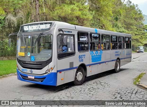 RJ: Empresas de ônibus de Petrópolis abrem vagas para motorista e cobrador