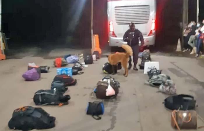 RR: PM apreende entorpecentes durante fiscalização em ônibus na BR-174, em Rorainópolis