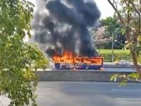 Vídeo: Ônibus da EMTU pega fogo na Rodovia Raposo Tavares em Cotia/SP - revistadoonibus