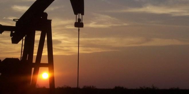 Los pedidos de exportación suman 35 millones de barriles.
