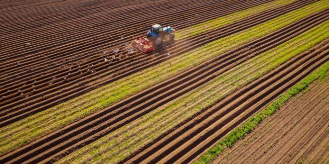 La Aduana simplifica trámites para facilitar la exportación de productos agrícolas.