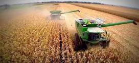 Se aceleran los embarques de productos agrícolas para exportación.