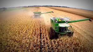 AFIP estableció condiciones para exportaciones de bienes agrícolas para consumo.