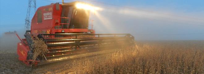 ¿Cómo puede afectar a la producción agropecuaria la baja en los derechos de exportación?