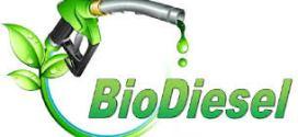 Europa oficializó acuerdo por el biodiésel: autorizan importaciones de ocho empresas locales.
