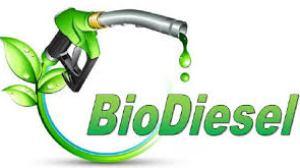 Europa reabre el mercado para el biodiésel argentino con acuerdo de precios y aranceles reducidos
