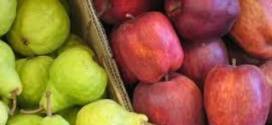 Extienden beneficios para productores de peras y manzanas en cinco provincias.
