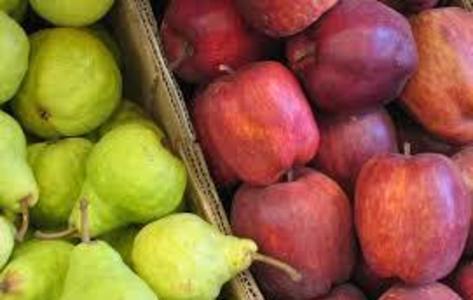 Prorrogaron la emergencia económica y productiva para la cadena de peras y manzanas