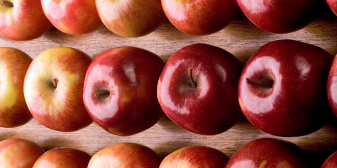 Las exportaciones regionales de manzanas a Brasil crecieron 42%.