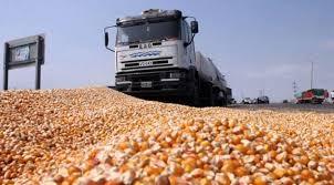 Acordaron un incremento del 9,6% para las tarifas de referencia del transporte de granos