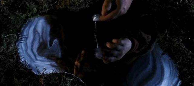 Hagrid a examinar sangue de unicórnio.