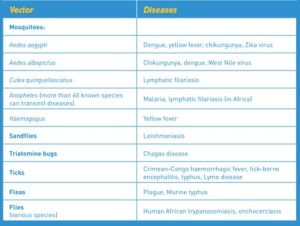 Vetores e doenças associadas