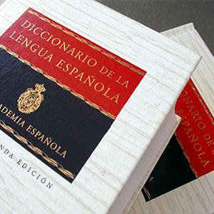 foto diccionario rae en revista literaria galeradas