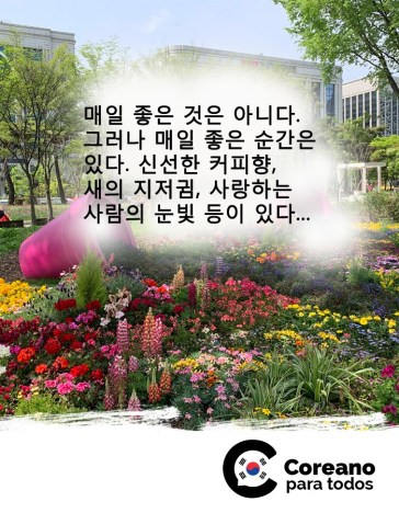Crédito: Soo Jin Oh (Juliana Oh)/ Coreano para Todos.