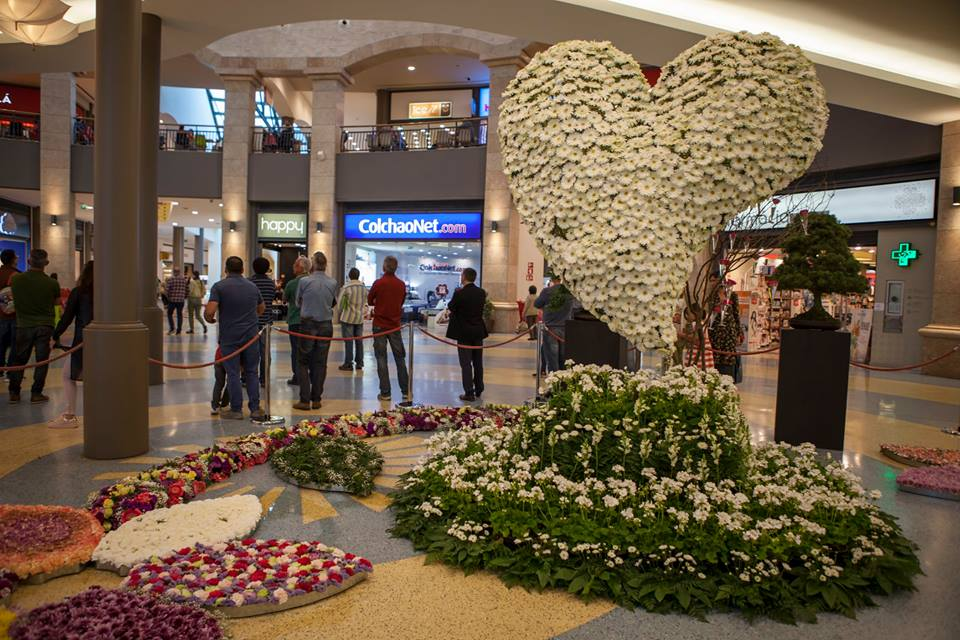 festival da flor