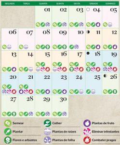 calendário lunar de novembro