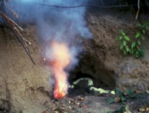 Ana Mendieta, Untitled: Silueta Series, 1979. Film Super 8 © The Estate of Ana Mendieta Collection, LLC. Cortesía Galerie Lelong & Co.